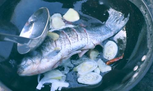 【寻找滨州味道】黄河边野炊,炖鱼
