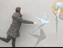 3D藝術畫亮相沾化古城旅游景區