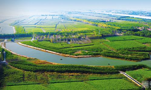 高新區:文化產業園開建 龍江濕地爭創4A級景區