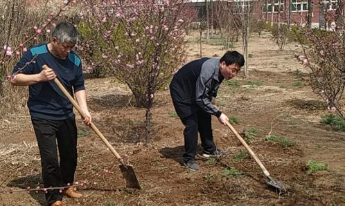 创新营造花园式校园 何坊街道中学建立劳动实践基地