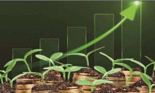 央行副行长陈雨露:我国绿色金融发展正全面提速