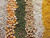 农产品市场扩大开放:豆油等三大油脂进口拟取消关税配额管理
