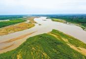 4月中旬,滨州将全面完成黄河淤背区高质量绿化林带建设任务