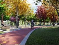 滨州黄河大道新增一处口袋公园 60个车位方便市民停车
