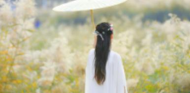 醉享·邹平黛溪河湿地公园·深秋韵味