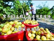 滨州网直播|聚力83工程 围绕现代农业发展,加快乡村振兴步伐