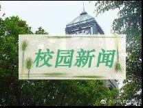 """滨城第二实验小学开学第一天""""花样多"""""""