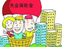 滨州市从11月1日期对失业金标准调整到每人每月980元
