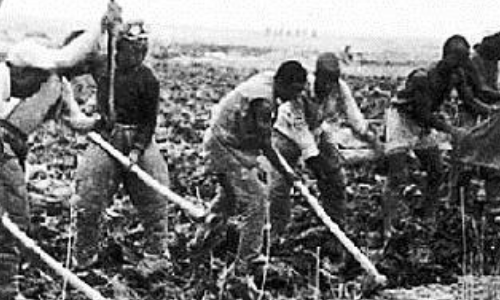 【扒着门缝看历史】(137)打仗生产两不误,渤海军区1944年生产节约工作总结