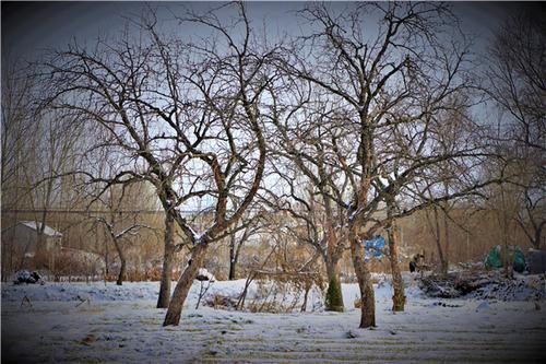 疫情寒冬终将过去 多彩的世界终会到来