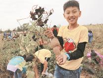 博兴县特色乡村旅游火爆 感受乡土气息农家风情
