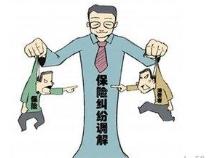滨州市保险行业协会成功化解涉外诉调对接案件