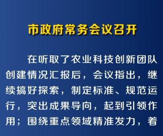 1月7日市政府常务会议