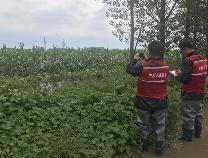 市农业农村局积极推动农业保险投保工作