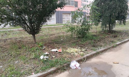 【创城红黑榜】马坊馨苑:小区卫生差 居民很糟心