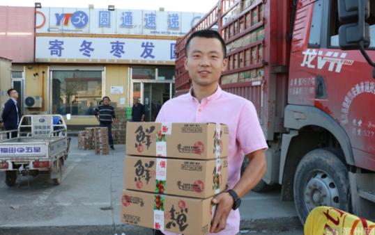 今年500余万单沾化冬枣已发往全国各地,预计全年可达千万单