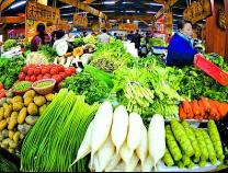 今春菜价为何坚挺?比去年同期上涨10.89%