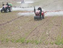 """""""春分""""到  农事忙 博兴""""职业农民""""在给小麦喷施除草剂"""