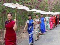 """农家女创办滨州首家旗袍协会 向世界展示""""滨州美"""""""
