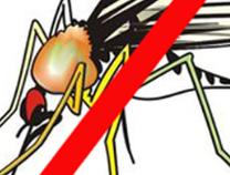 春季出游易过敏、蚊虫多?专家支招如何有效防范