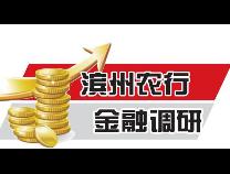 滨州农行:防范和打击电信网络诈骗犯罪的若干建议