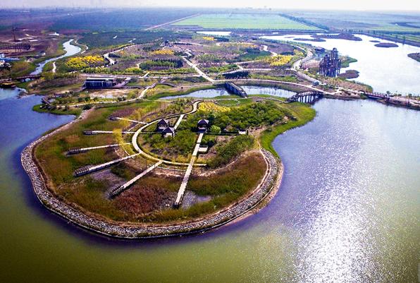 滨州湿地总面积居全省第四:连缀出一幅美不胜收的旖旎画卷
