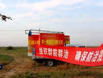 滨州夏蝗防治全面结束 飞蝗密度压到防治指标以下