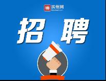 """""""万名大学生进滨州"""" 云端招聘会来了!不要错过"""