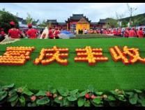 """人民网评:""""中国农民丰收节"""",让全社会共享丰收快乐"""