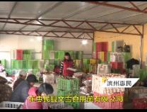 惠民村里加工小香菇 老人轻松月挣2000块