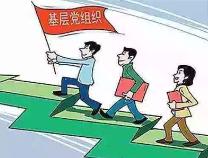 全面提升基层党组织组织力