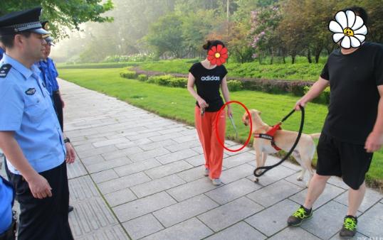 邹平公安集中整治城市不文明养犬行为