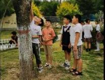 点燃宅家生活 阳信县第三实验小学开展疫期云端读书会