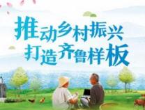 滨州成立五个专班 打造特色乡村振兴齐鲁样板