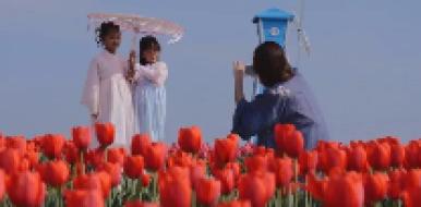 五一假期,惠民县实现旅游收入6300万元