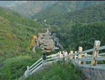 """滨州""""创建国家森林城市""""  将新增造林65万亩"""