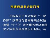 7月26日市政府常务会议