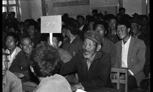 沾化县永丰乡组织拍卖荒碱涝洼地