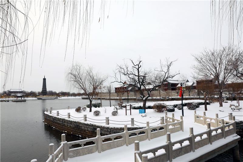 来无棣古城赏雪景