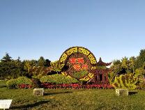 庆祝新中国成立70周年!滨州布置近90万株鲜花装扮城区