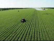 3月1日起施行新管理办法 促进农村土地经营权规范有序流转(政策解读)