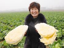 惠民沿黄乡镇大显身手发展特色农业品牌