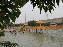 阳信玉友学校投资300万元打造山东首家防溺水教育基地