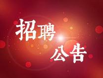 速报名!滨州国投集团招聘17人