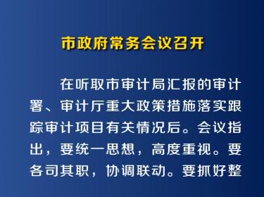 2月21日市政府常务会议