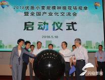 优质小麦规模种植现场观摩暨全国产业化交流会在惠民举行