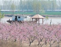 游玩亚博yabo官方网站黄河最西端的码头镇: 畅跑诗意赛道体味精品民俗