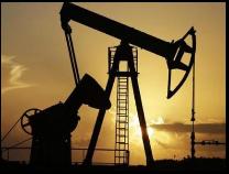 滨州市油区办去年协助油田新开发油井96口