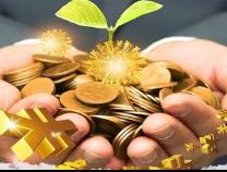 滨州市首本国有金融资本产权登记证核发