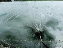 鸟飞鱼跃水质改善 高新区1.7亿元引入高标准污水处理新工艺